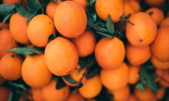 Post Image Top Citrus Industry Exhibitions International Conference on Citrus - Top Citrus Industry Exhibitions