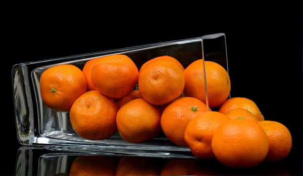 Post Image Top Reasons to Attend Citrus Exhibitions To Get a Chance of Buying Equipment - Top Reasons to Attend Citrus Exhibitions